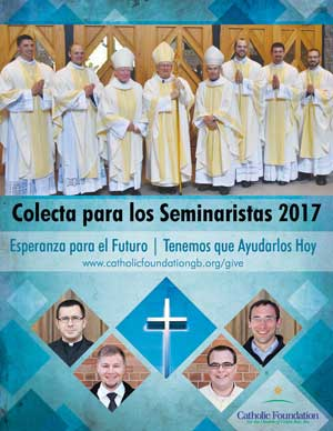 Seminarian Collection Poster Spanish 2017