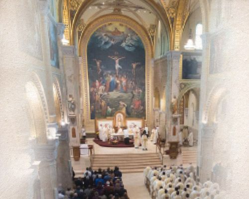 White Mass | Sunday, Feb. 16