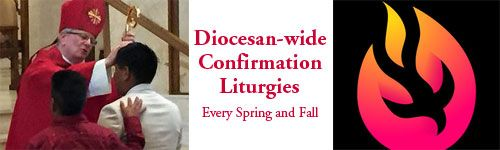 Diocesan-wide Confirmation Liturgies